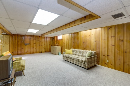Lower Level Rec Room.