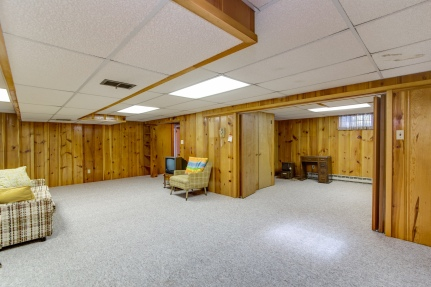 Lower level rec room and separate area
